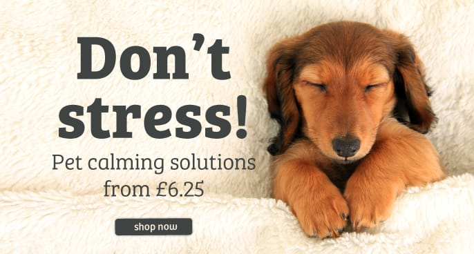 Pet Calming & Anxiety Solutions