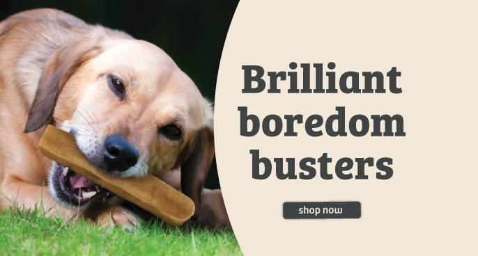 Brilliant Boredom Busters