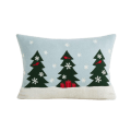 Holiday Pillows & Throws