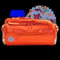 Starfish Orange gallery image