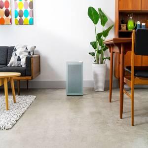 Coway Airmega 150 Sage Green on Living Room