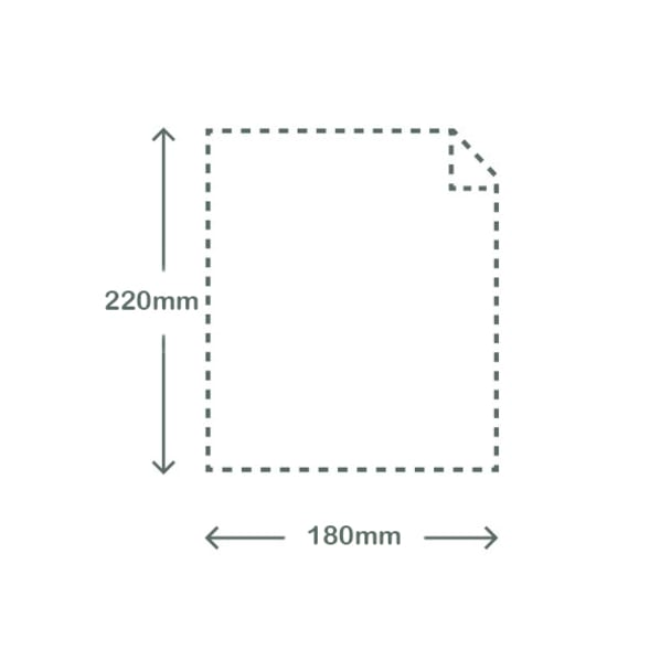Clear NatureFlex Bag - 22 x 18cm