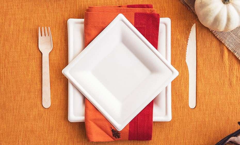 6 inch Square Bagasse Plate - White