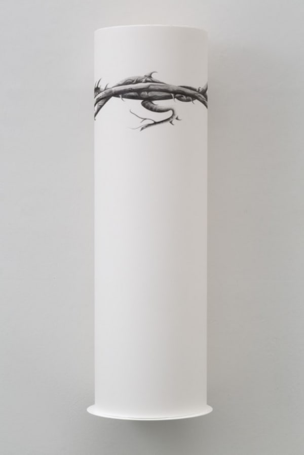 roll of paper with fine line drawing of thorns