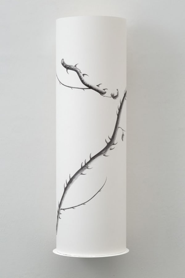 roll of paper with fine line drawing of a branch with thorns