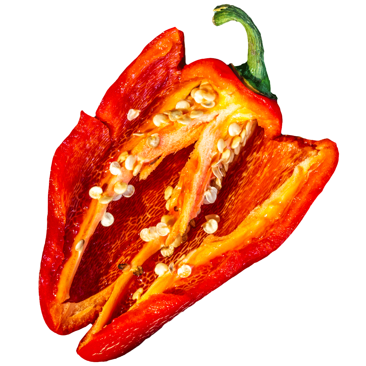 Ripe Red Jalaepeño split open to expose inner seeds and meat