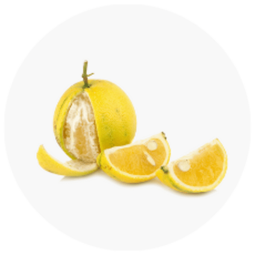 Bergamonte® citrus extract