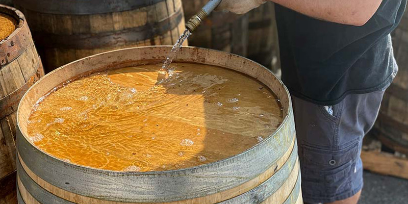 A worker head swells a wine barrel by filling the top end with water using a hose.