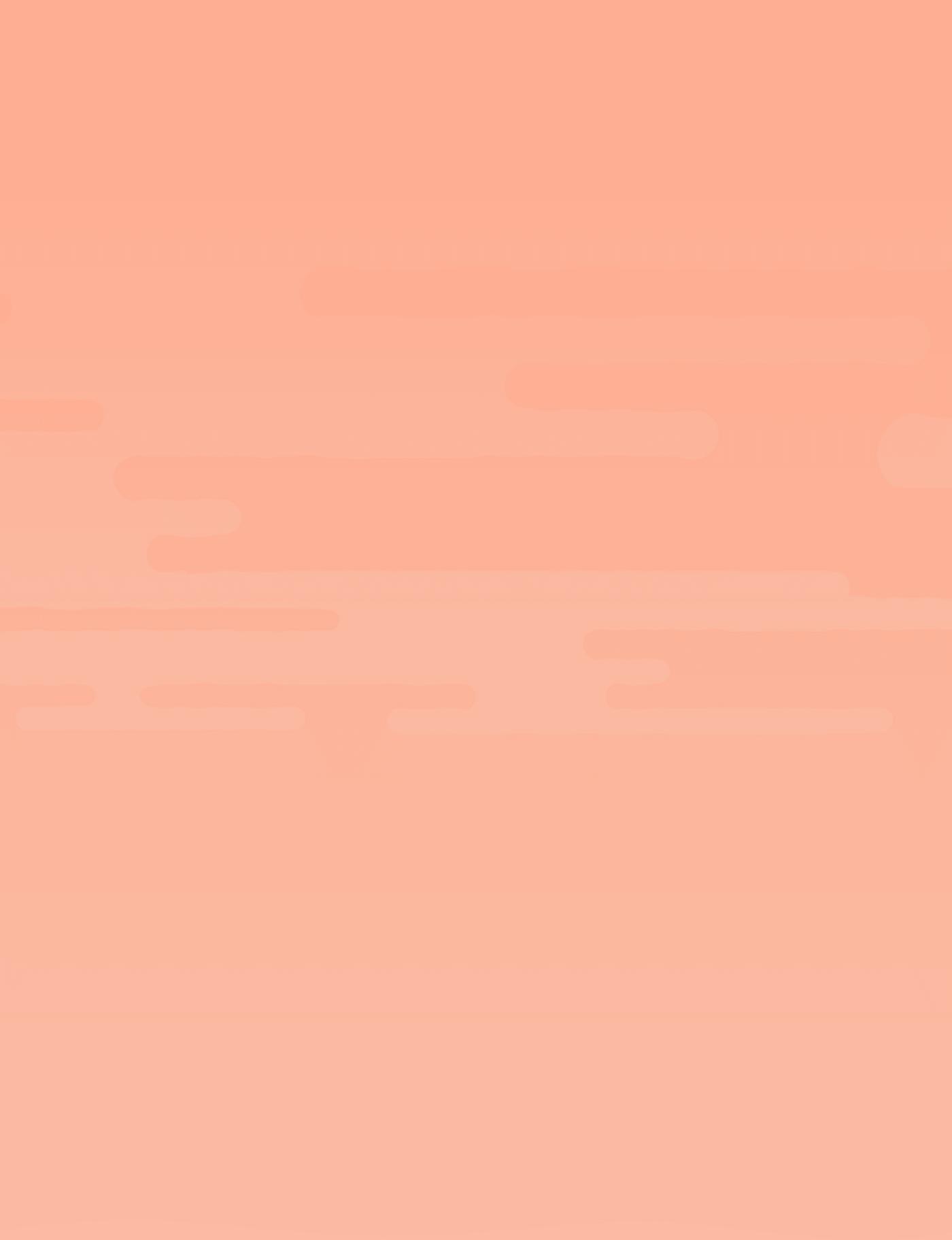 Choc Orange Raw Slice Mix