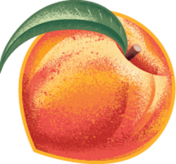 Pear, Peach & Chia Australian Fruit Puree 120g