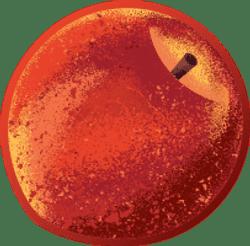 Plum, Nectarine & Brown Rice Australian Fruit Puree 120g