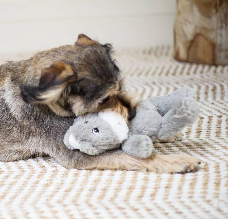 Kazoo Furries Toys Large Long Eared Donkey