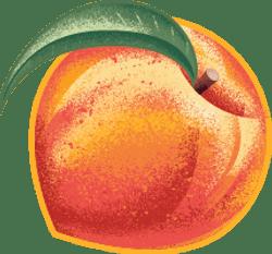 Pear, Peach & Chia Australian Fruit Puree Multipack
