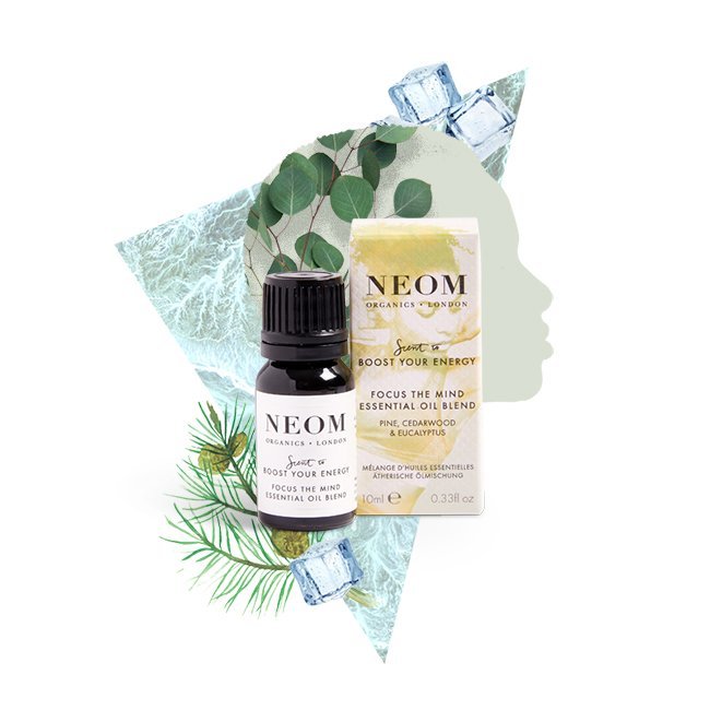 Focus The Mind essential oil blend
