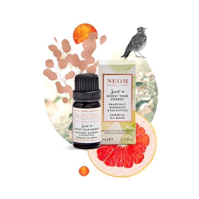 Grapefruit, Mandarin & Eucalyptus Essential Oil Blend